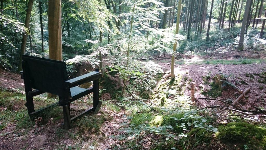 Natur auf deutschen Pilgerrouten.