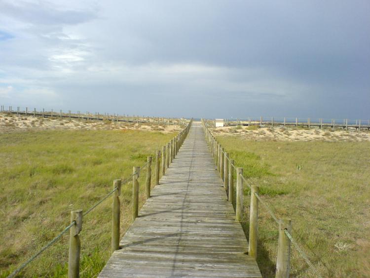 Dies ist ein Foto von einem Steg auf dem Pilgerweg Camino Portugues